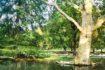 I 5 parchi e giardini più belli di Milano