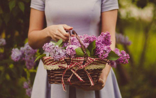 Flor Autunno 2020 a Milano: un grande giardino di fiori, foglie e bellezza arriva in città